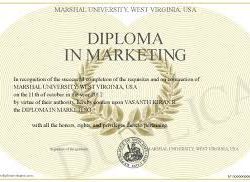 How A Marketing Diploma Can Help You Succeed In Today's World
